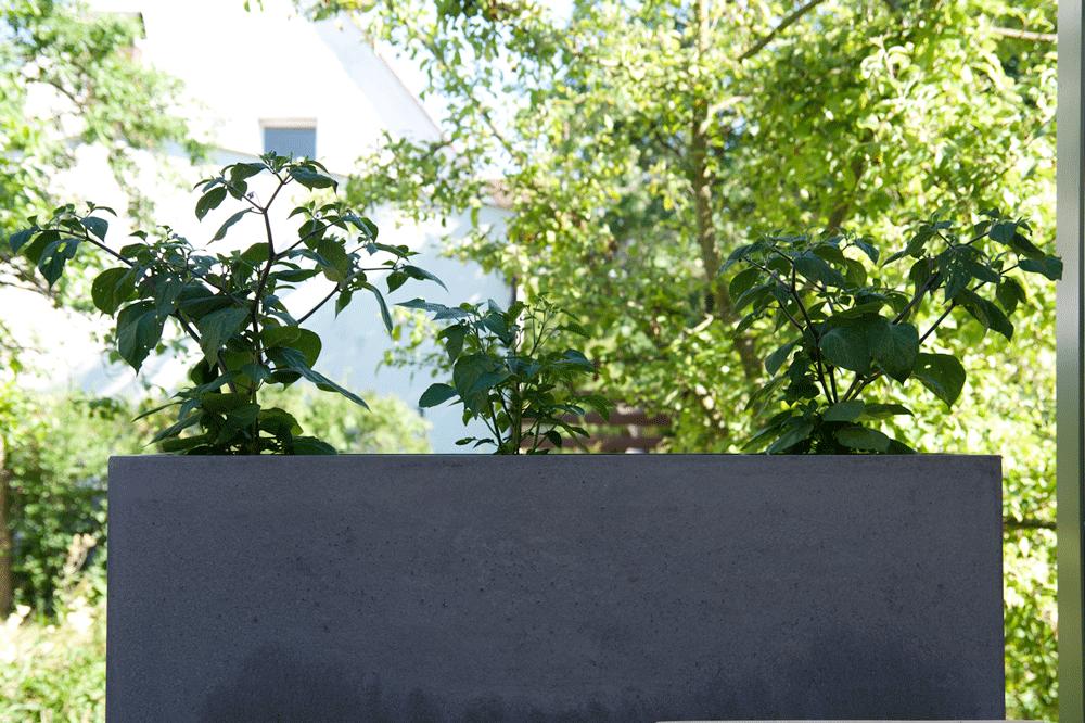 Pflanztrog Sichtbeton Anthrazit glatt