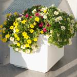 Kleiner Blumenkübel Beton, weiß lackiert